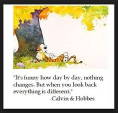 calvin and hobbes.changes